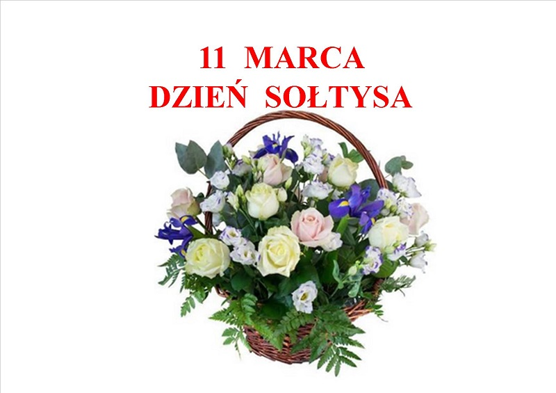 SOŁTYS-1